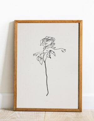 Róża (bez napisu)